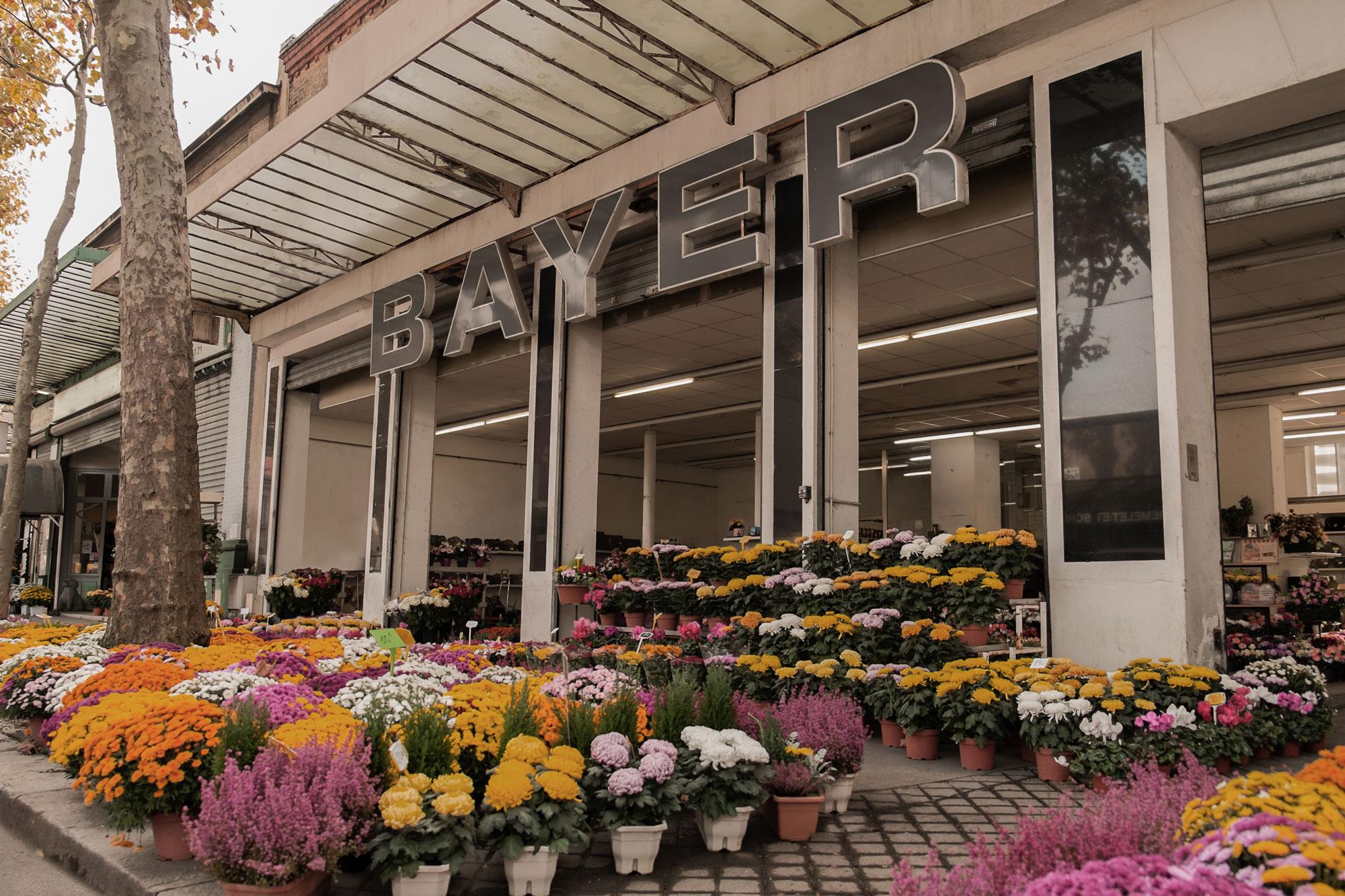 Pompes Funèbres Sain Ouen : Agence Cridel Bayer Goudry