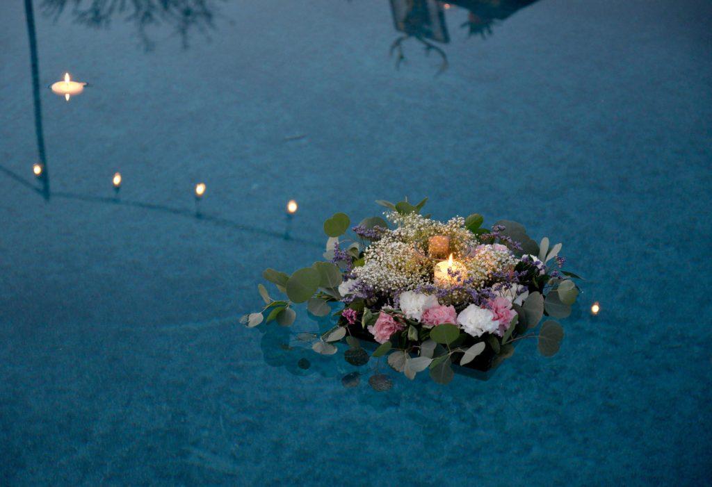 photo article aquamation