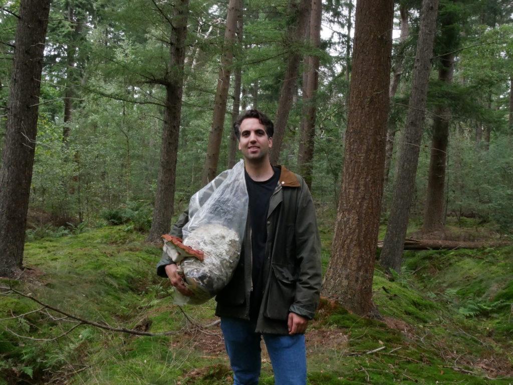 Un cercueil à base de champignon, pour un retour à la nature 100%  écologique   Maison Cridel